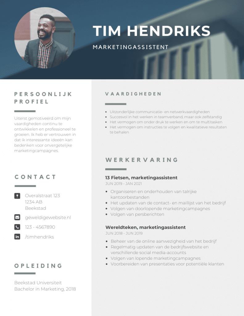 CV, template, canva, voorbeeld