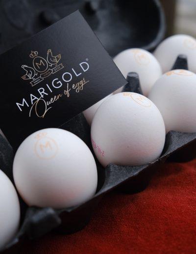 Marigold,